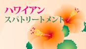 bn_hawaii